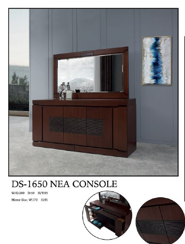 DS-1650CONSOLE